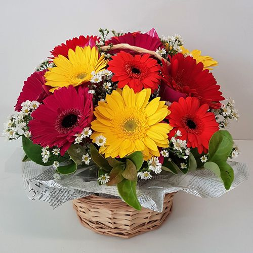 Enchanting Basket of Mixed Gerberas