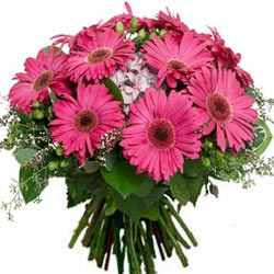Urbane Bunch of Pink Gerberas