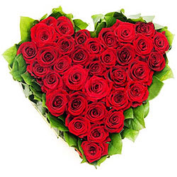 Majestic Hearty Arrangement of Dutch Roses