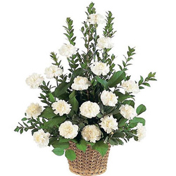 Shop for a fresh White Carnations basket