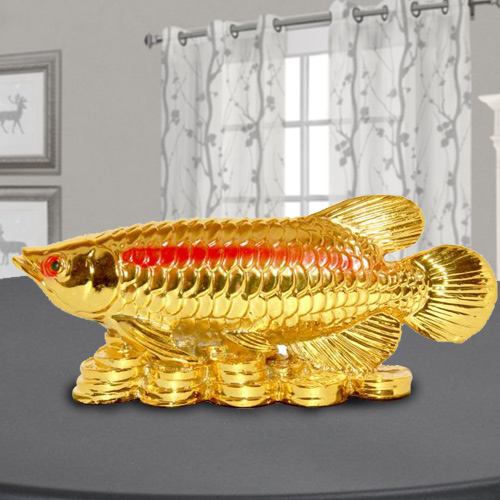 Golden Arowana Fish
