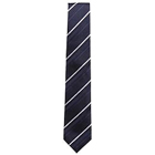 Elegant Tie from Arrow