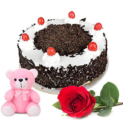 Book Online Black Forest Cake with Single Rose N Teddy