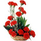 Sophisticated 18 Red Colored Carnations Bouquet