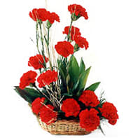 Shop Basket of Red Carnations Online