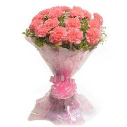 Deliver Bouquet of Pink Carnation Online