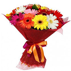 Buy Online Bouquet of Mixed Gerberas