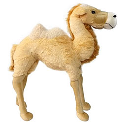 Classy and Fabulous Standing Camel Soft Toy