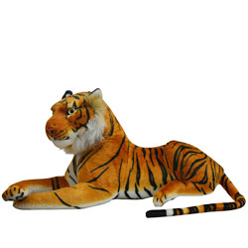 Playful Soft Tiger