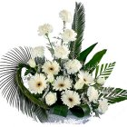 Cheerful Bunch of 2 Dozen White Floras